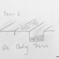 Trench Composting Rotation Year 2