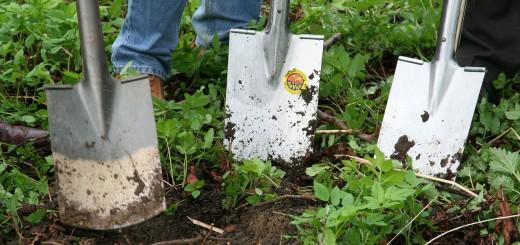 12-gardening-331986_1280