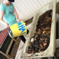 Feeding worms with food waste