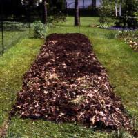 sheet composting garden composting