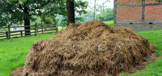 Composting straw