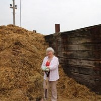 Collecting straw for the compost